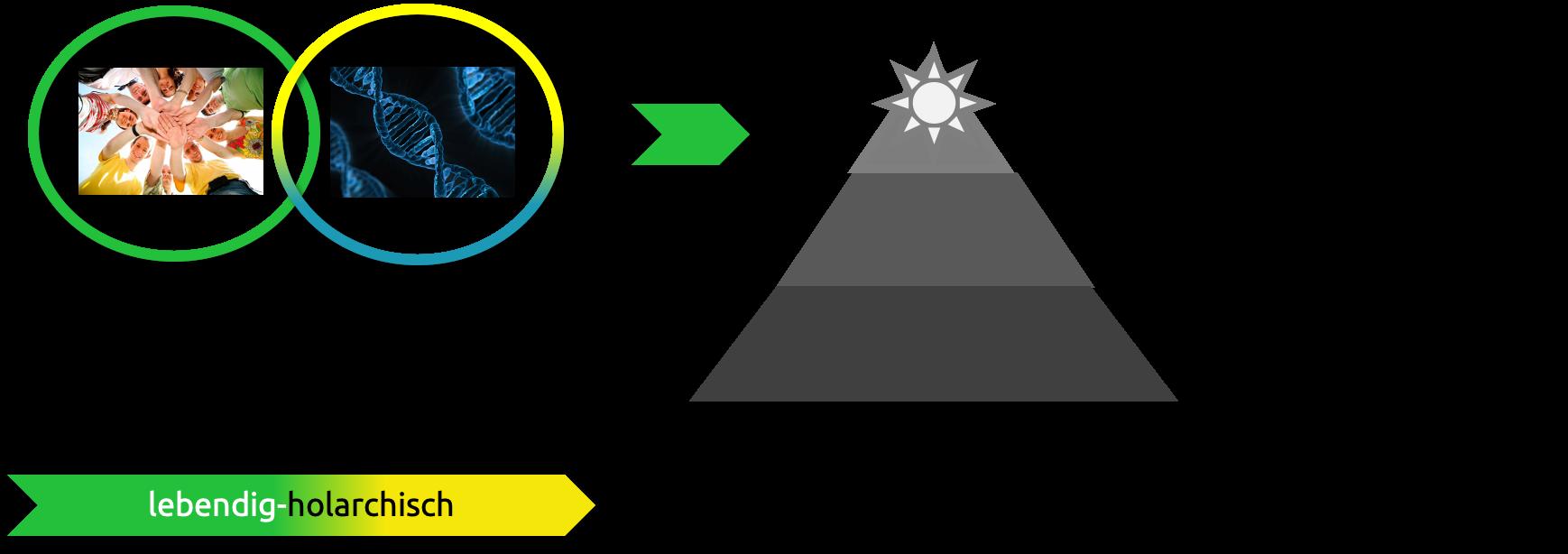 Soziokratie unterstützt Sinnorientierung durch integrierten Purpose und abgestimmte Domains